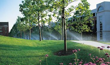 Residential & Commercial Lawn Sprinkler Installation