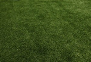 D.E.-Synthetic-Turf-11-a1024x623